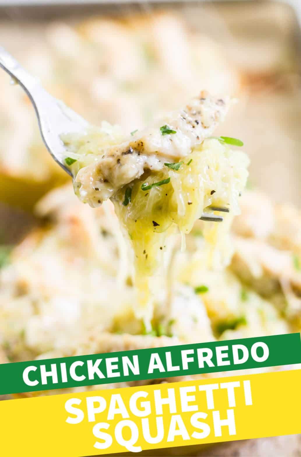 chicken alfredo stuffed spaghetti squash
