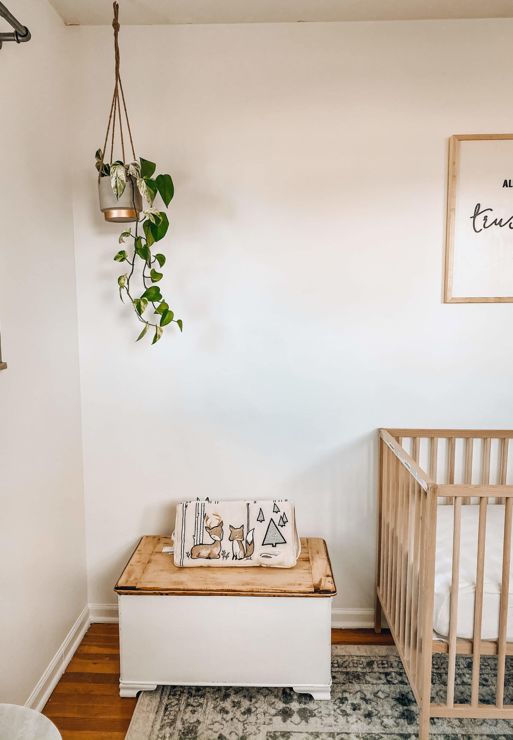 toy chest and hanging plant for neutral nursery