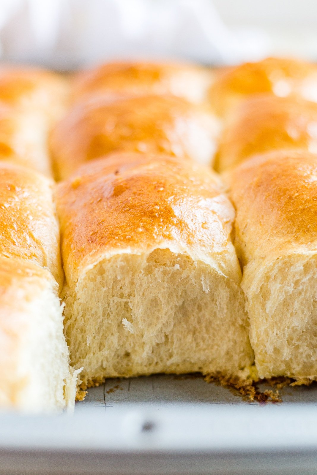 super soft sourdough roll in the pan